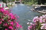 Wingfield Park Reno Nv